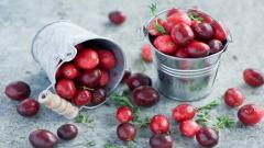 Berries Wallpaper 44415
