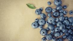 Berries Wallpaper 44419