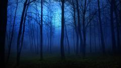 Creepy Night Wallpaper 28044