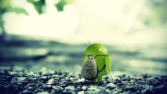 Cute Android Wallpaper 43629