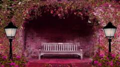 Cute Bench Pictures 31654