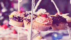 Cute Cupcake Wallpaper 36350