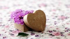 Cute Flowers Mood Wallpaper 43968