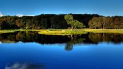 Free Beautiful Lake Wallpaper 37221
