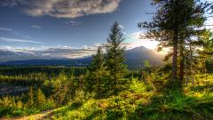 HDR Nature Background 38352