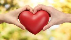 Heart Hands Wallpaper 40991
