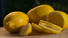 Lemon Slices Wallpaper 43200