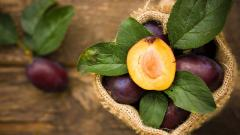Lovely Plum Fruit Wallpaper 43640
