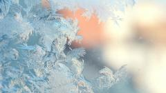 Mood Nature Frost Wallpaper 43949