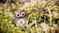 Owl Pendant Background 40984