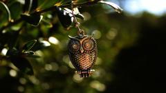 Owl Pendant Wallpaper 40983