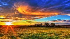 Prairie Backgrounds 33021