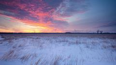 Prairie Wallpaper 33017