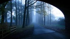 Road Tunnel Wallpapers 38510