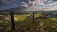 Stunning Barbed Wire Fence Wallpaper 44959
