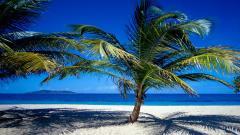 The Virgin Islands 27715