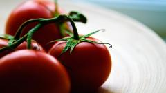 Tomatoes Wallpaper HD 44462