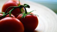 Tomatoes Wallpaper HD 44462