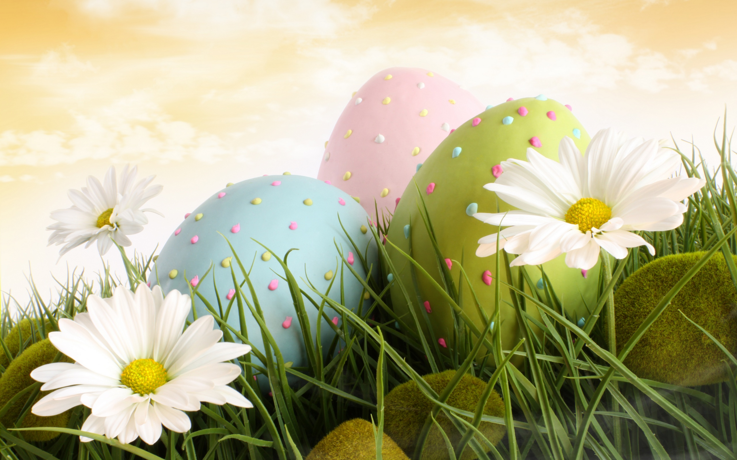 Easter Screensavers HD 21569 2560x1600 px ~ HDWallSource.com