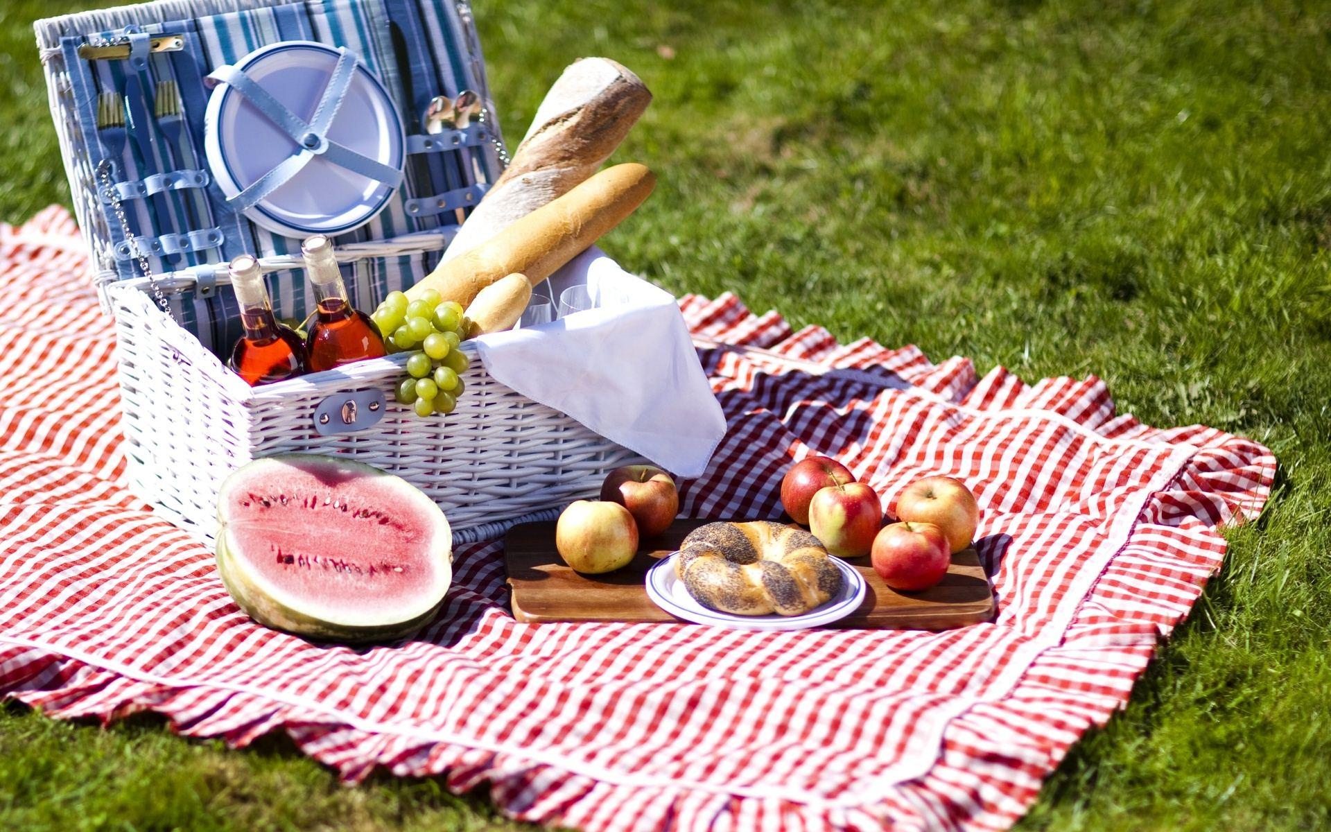 fantastic picnic wallpaper 43259