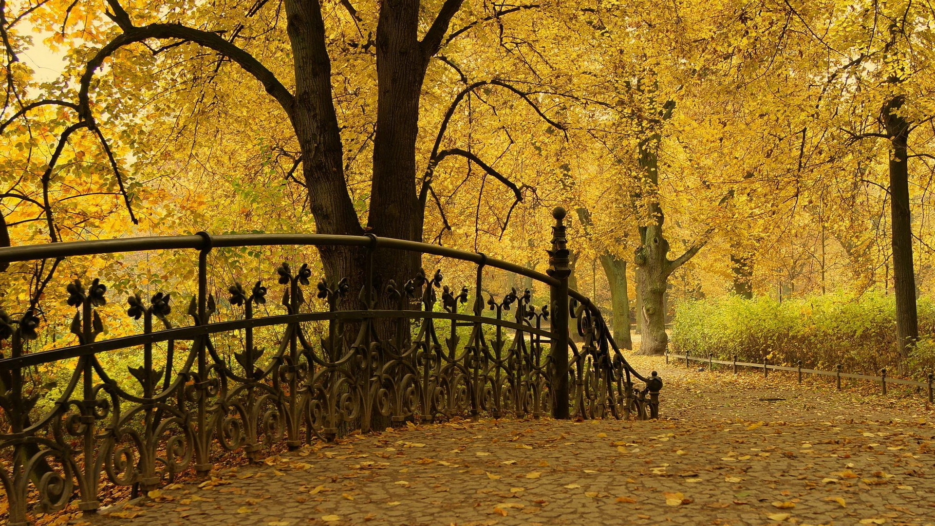 free park railing wallpaper 43790