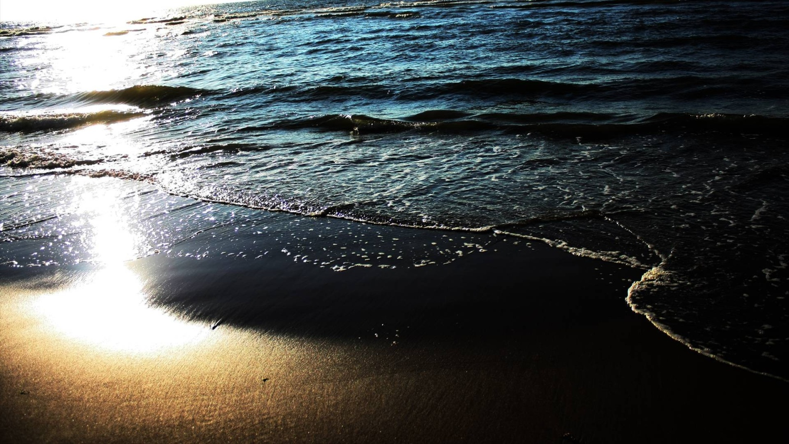 sea shore 26576
