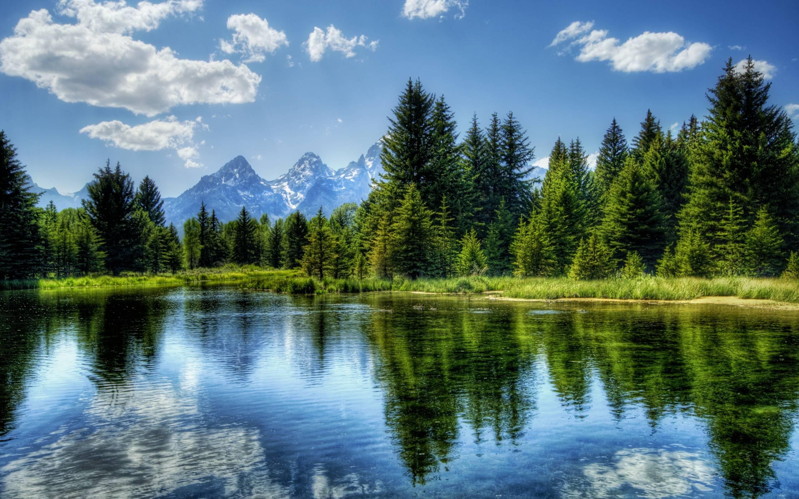 stunning landscape 29025
