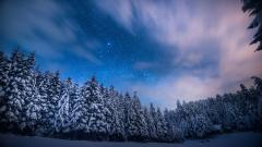 Awesome Frosty Wallpaper 36004