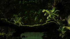 Awesome Jungle Wallpaper 41671