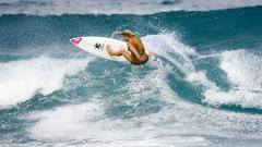 Awesome Surfer Girl Wallpaper 28101