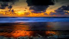 Beach Shore 26561