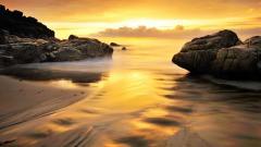 Beach Shore 26578