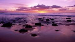 Beach Shore Wallpaper 26564