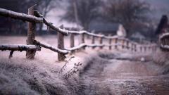 Beautiful Frosty Wallpaper 36000