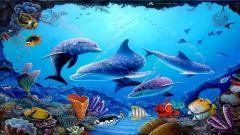 Dolphin Wallpaper 4553