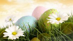 Easter Screensavers HD 21569