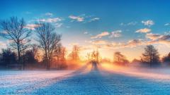 Fantastic Frosty Wallpaper 36002