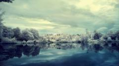 Frosty Wallpapers 36012