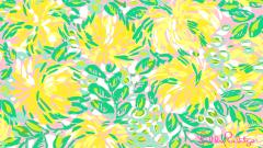 Lilly Pulitzer 41039