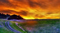 Lovely Sunset Wallpaper 41206