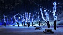 Pretty Winter Wallpaper 41356