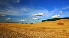 Stunning Landscape 29024