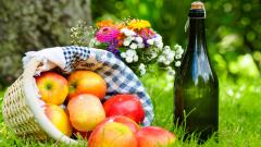Wonderful Picnic Wallpaper 43261