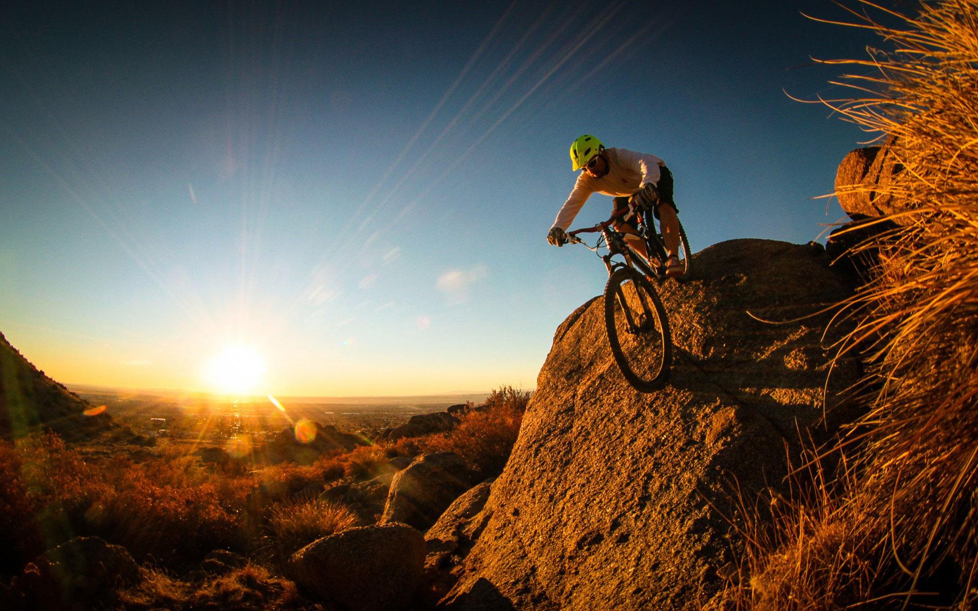 mountain biking 7328