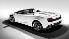 White Lamborghini Wallpaper 35018