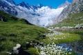 Beautiful Switzerland 3693