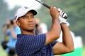 Tiger Woods 3593