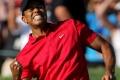 Tiger Woods 3610