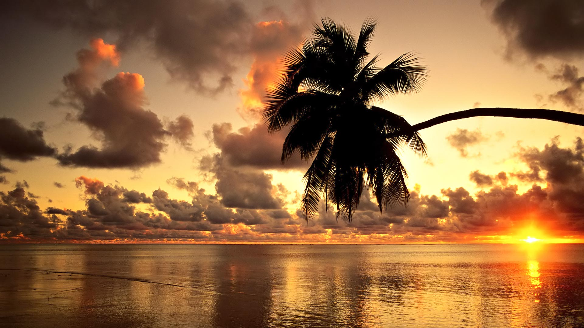 awesome hawaii wallpaper 20263