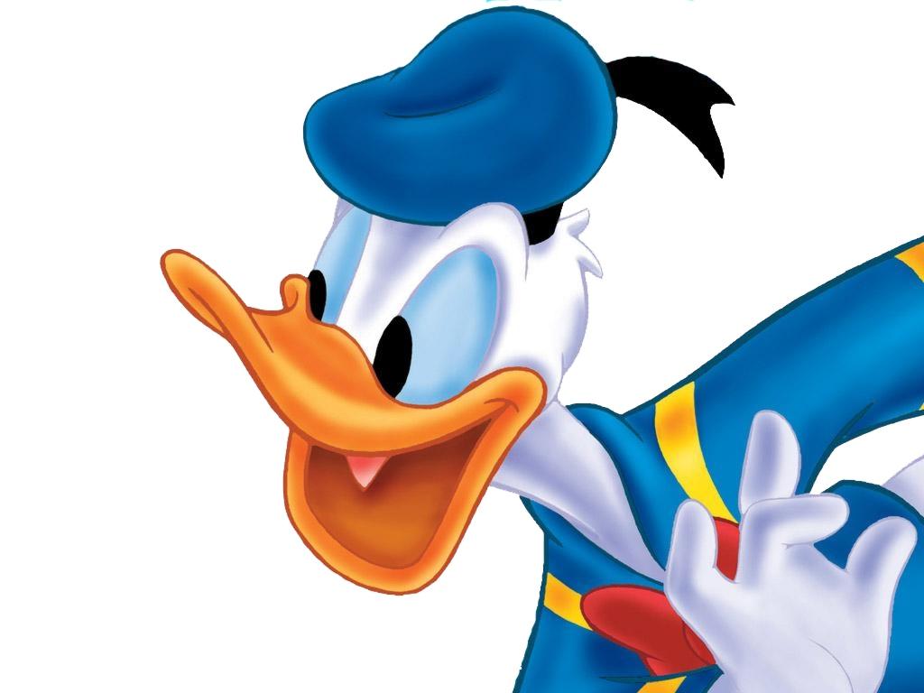 Donald Duck Wallpaper  X